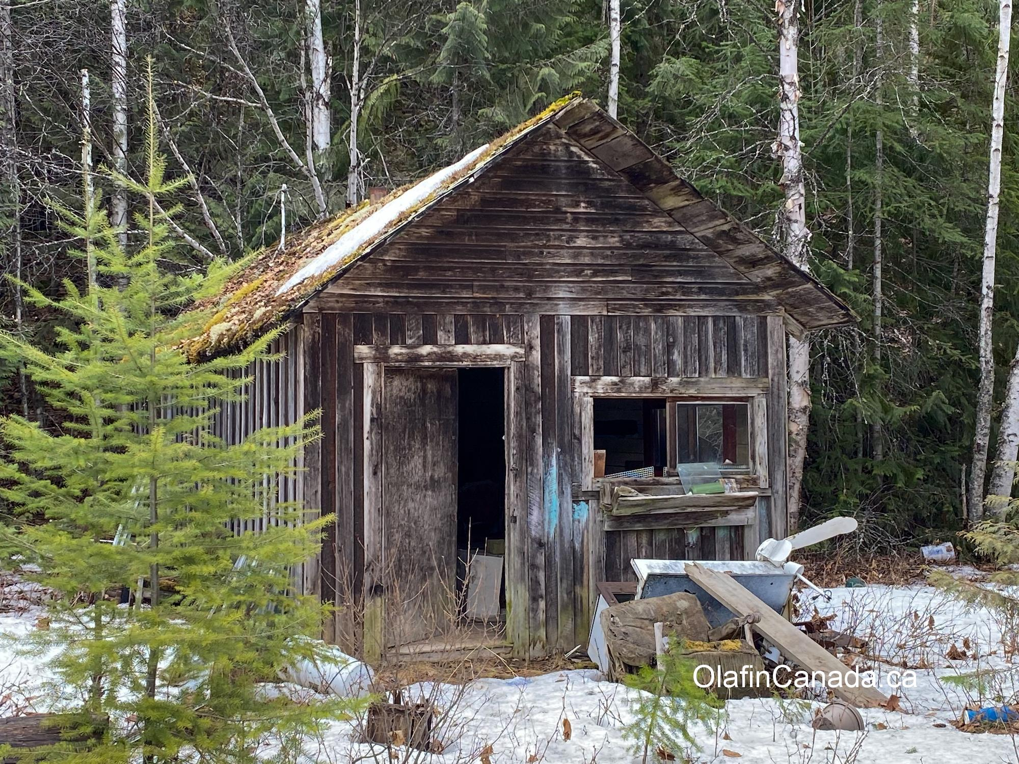 Abandoned old cabin on Stanley Flats in East Blackpool, near Clearwater #olafincanada #britishcolumbia #discoverbc #abandoned #cabin