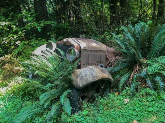 Old car near Sayward junction, Vancouver Island #olafincanada #britishcolumbia #discoverbc #abandonedbc #vancouverisland #car