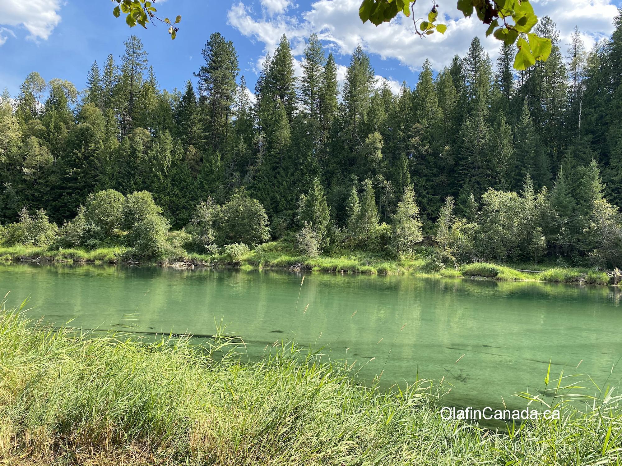 Green coloured river #olafincanada #britishcolumbia #discoverbc #landscape #coloursofgreen