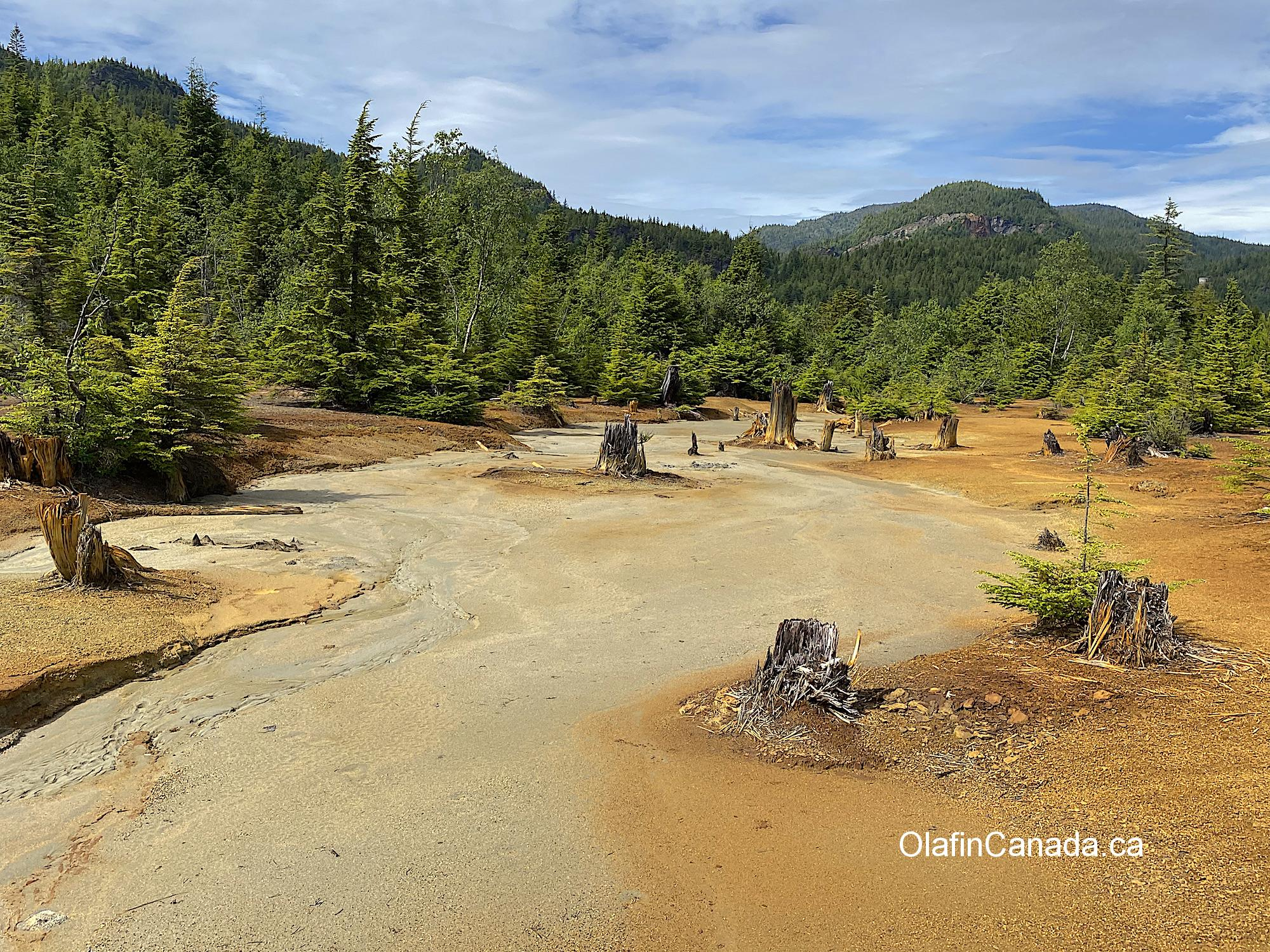 Polluted Hidden Creek in Anyox #olafincanada #britishcolumbia #discoverbc #abandonedbc #anyox