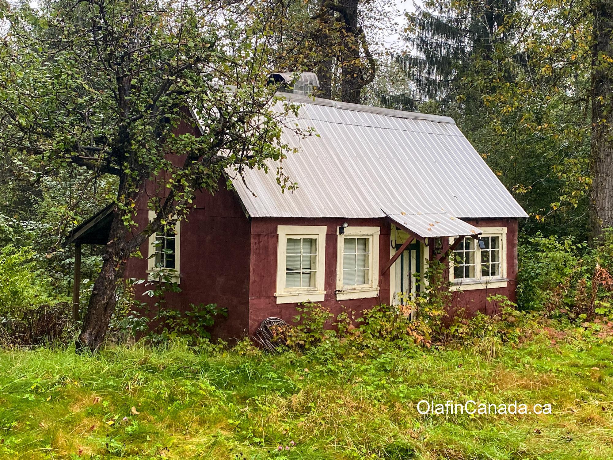Nice little cottage in Alice Arm. #olafincanada #britishcolumbia #discoverbc #abandonedbc #alicearm