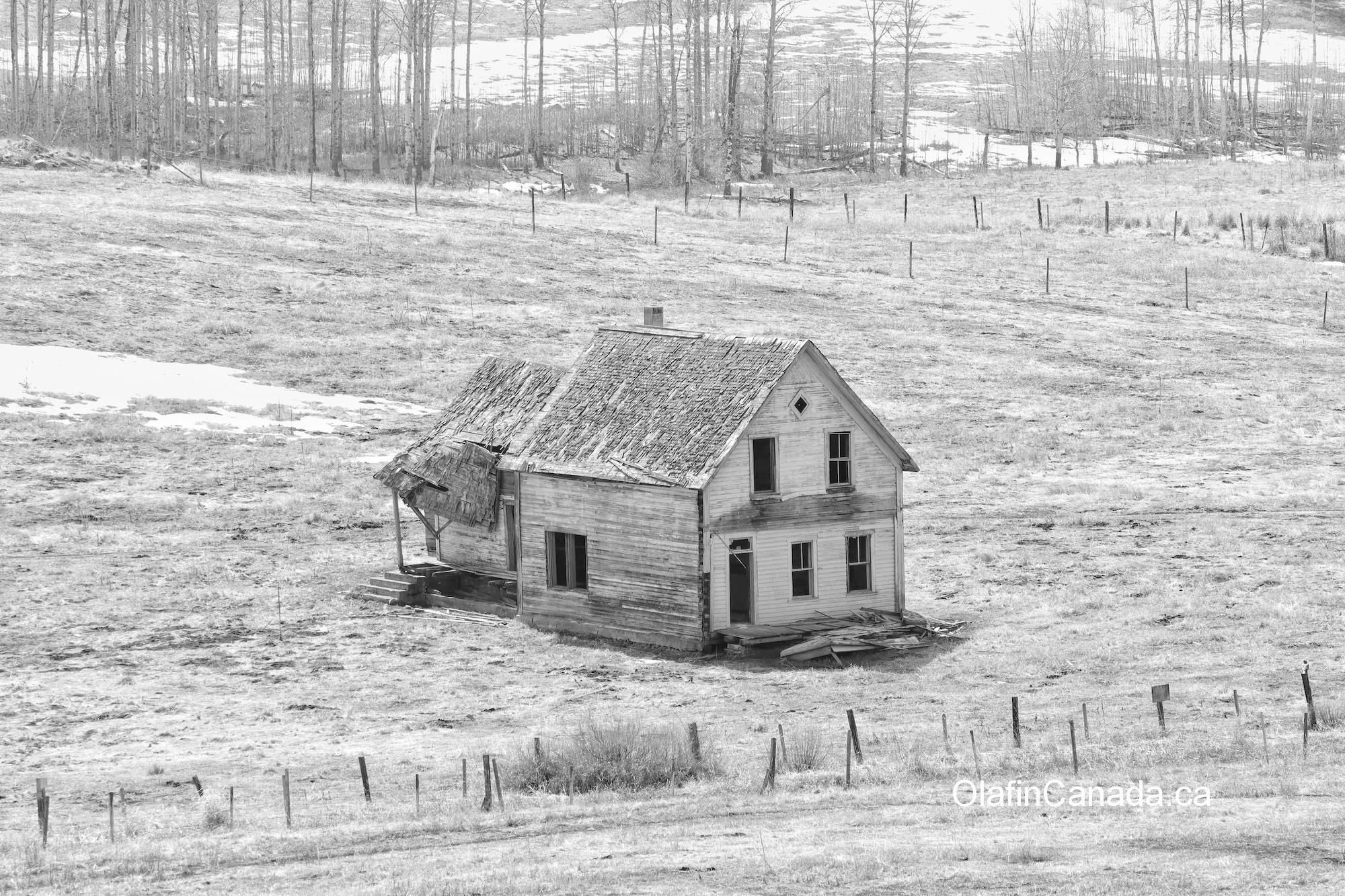 Lawless Ranch in Bridesville, along highway 3 #olafincanada #britishcolumbia #discoverbc #abandonedbc #bridesville