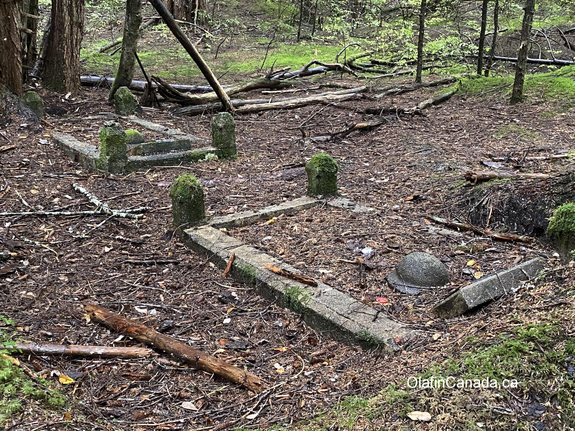 Abandoned graveyard in Anyox with concrete helmet from WW1 #olafincanada #britishcolumbia #discoverbc #abandonedbc #anyox #graveyard
