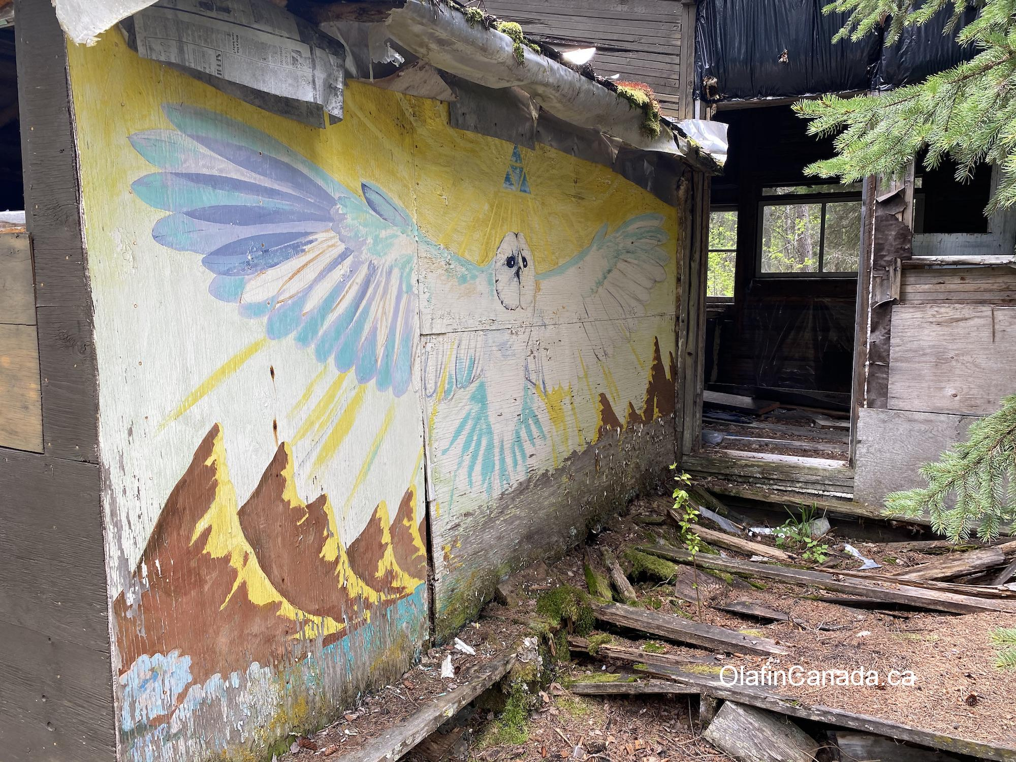 Mural of an owl in Stocks Meadow in West Kelowna. #olafincanada #britishcolumbia #discoverbc #abandonedbc #stocksmeadow #hippies