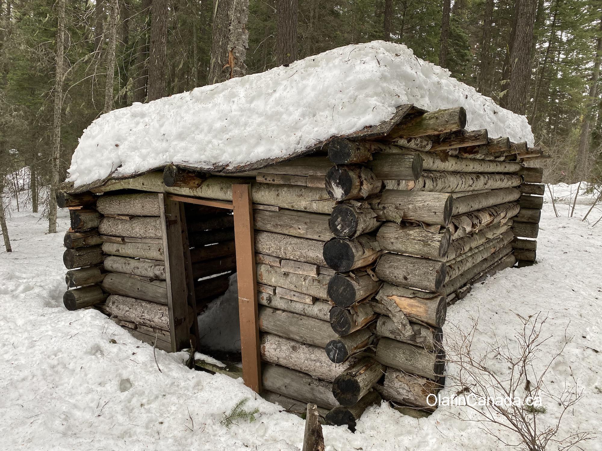 Old log cabin in the woods near West Kelowna #olafincanada #britishcolumbia #discoverbc #abandonedbc #westkelowna #cabin