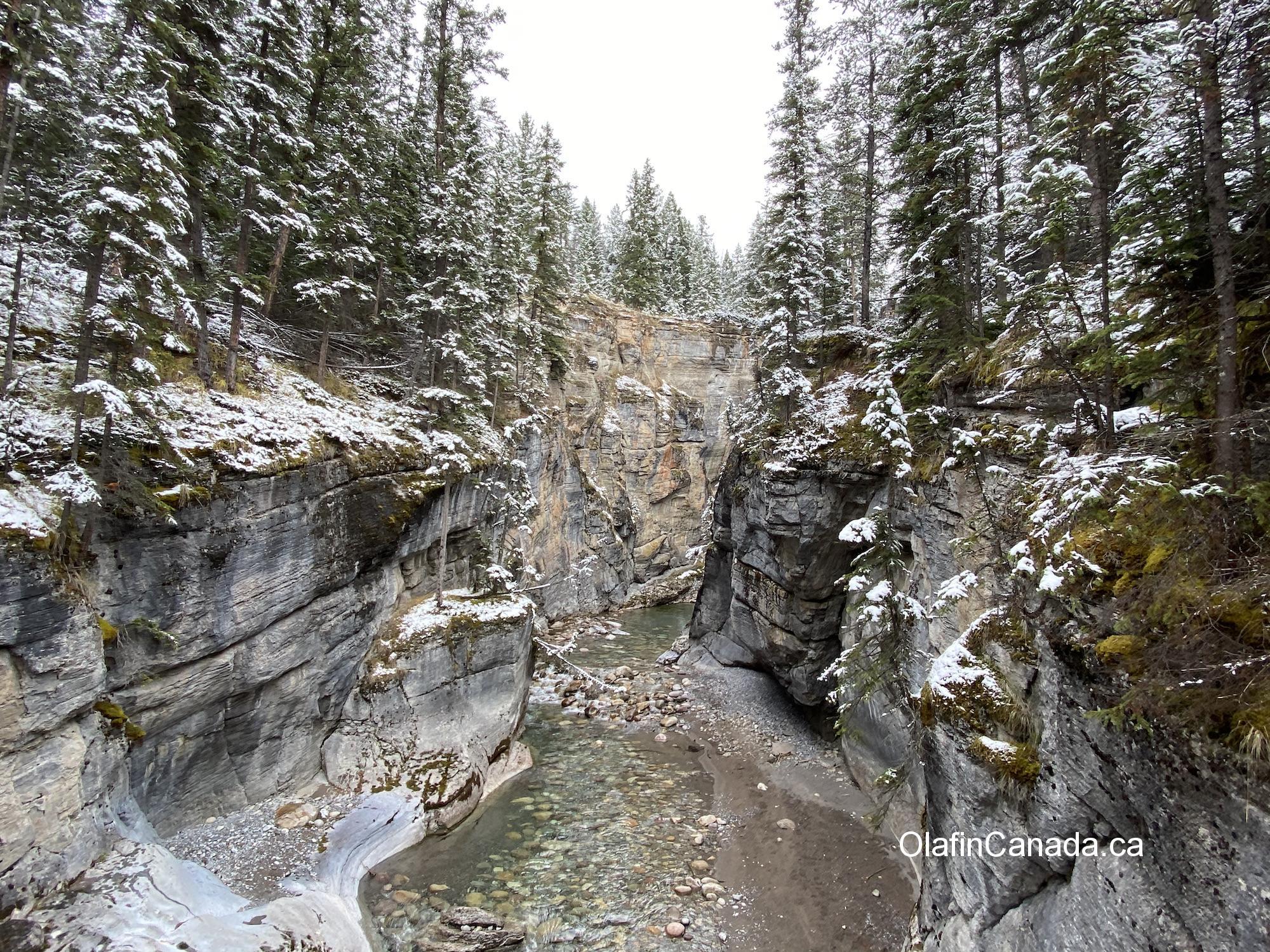 Maligne Canyon in the snow near Jasper AB #olafincanada #alberta #rockies #jasper #malignecanyon