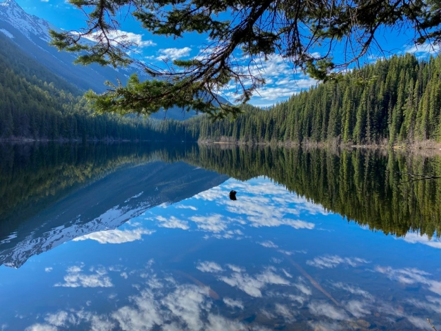Mirror lake near Ogden in BC #olafincanada #britishcolumbia #discoverbc #ogden #sunshine