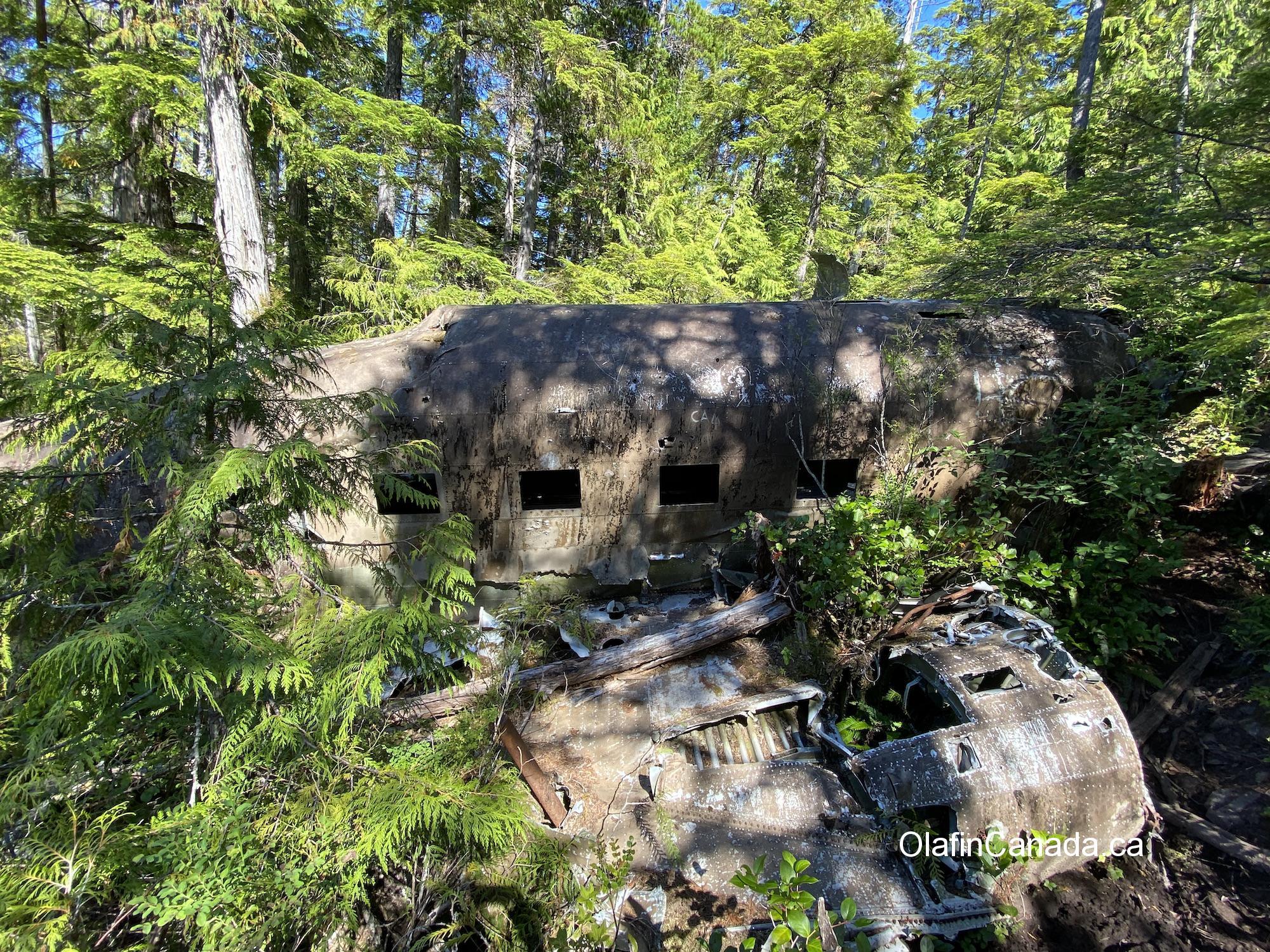 Dakota plane, crashed in 1944 near Port Hardy on Vancouver Island #olafincanada #britishcolumbia #discoverbc #abandonedbc #crashed #dakota
