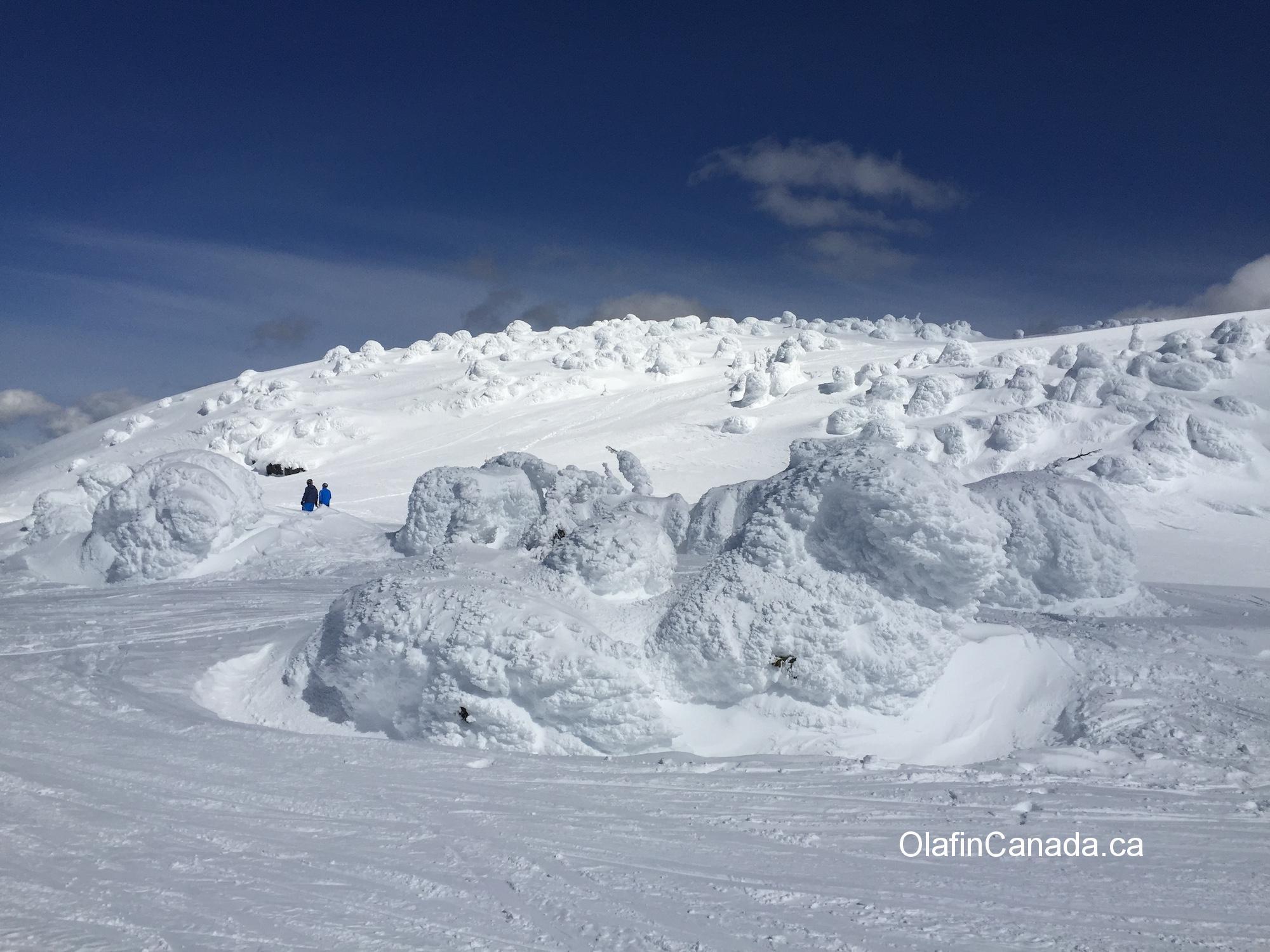 Snow ghosts at Big White in Kelowna #olafincanada #britishcolumbia #discoverbc #bigwhite #kelowna #snowghosts