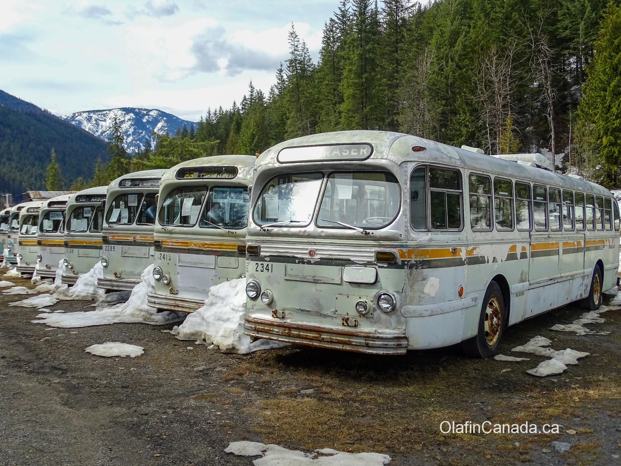 Vancouver busses from the fifties #olafincanada #britishcolumbia #discoverbc #abandonedbc #sandon #busses