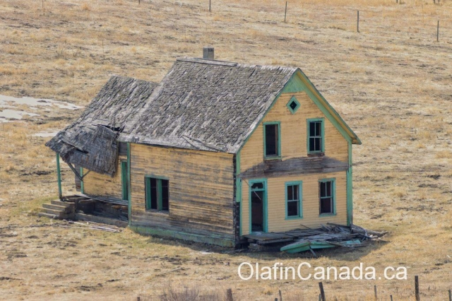 Yellow house called Lawless Ranch, built in 1900 in Bridesville on Sidley Mountain #olafincanada #britishcolumbia #discoverbc #abandonedbc #bridesville #ranch