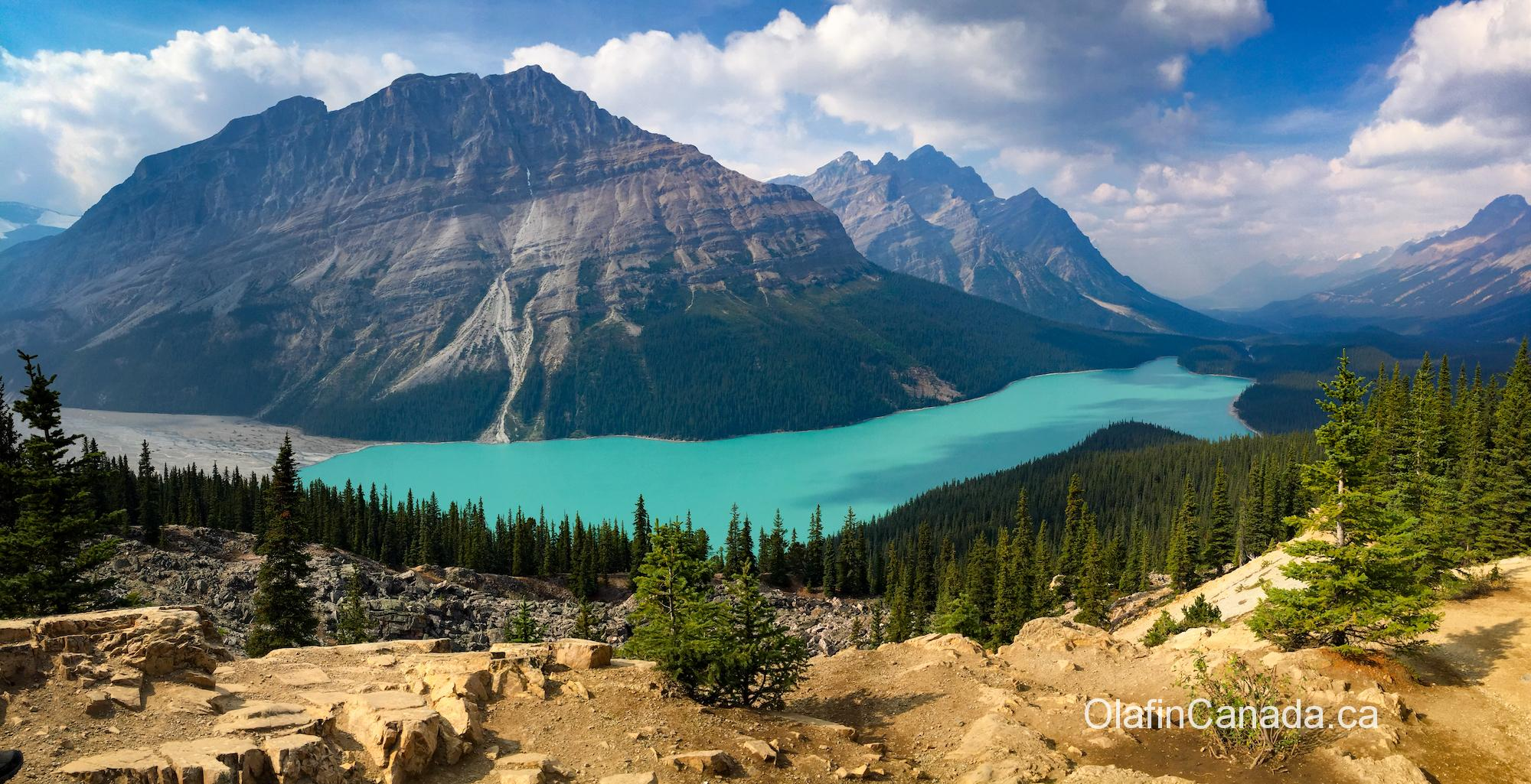 Peyto Lake on the Icefields Parkway in Alberta #olafincanada #alberta #rockies #icefieldsparkway #peytolake