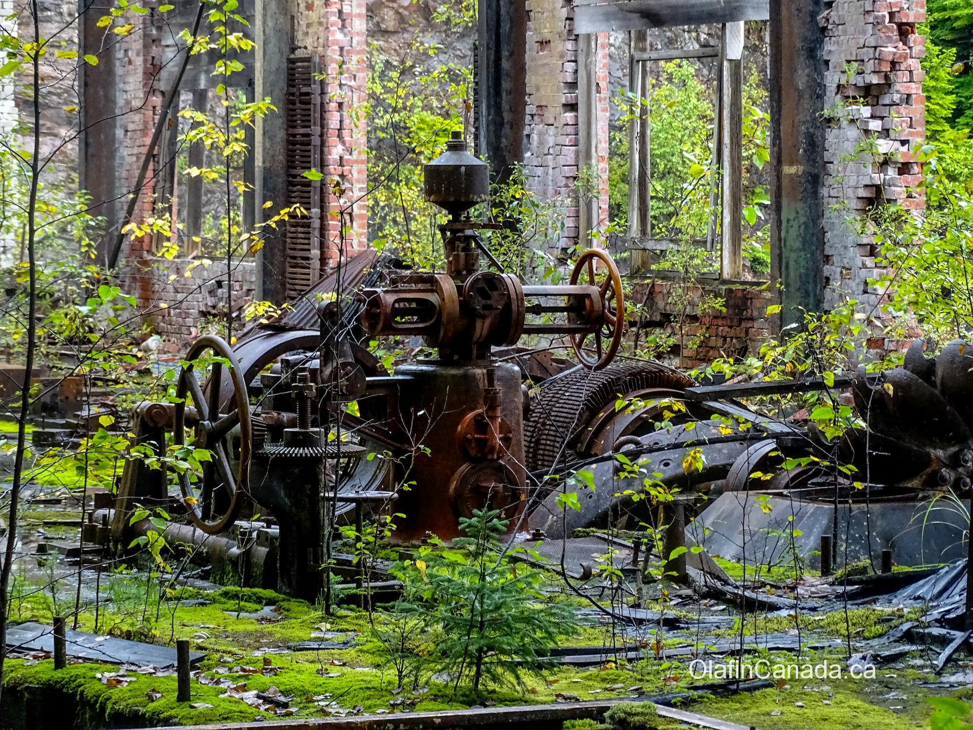Turbine in powerhouse No. 1 in Anyox #olafincanada #britishcolumbia #discoverbc #abandonedbc #anyox #powerhouse