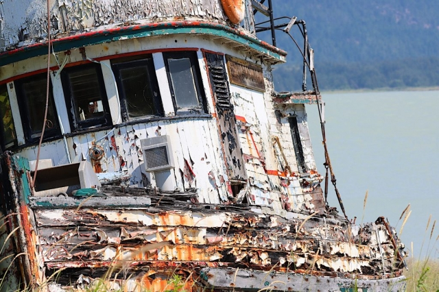 This old boat named Qualichem washed up at the cannery years ago #olafincanada #britishcolumbia #discoverbc #abandonedbc #tallheocannery #bellacoola #boat
