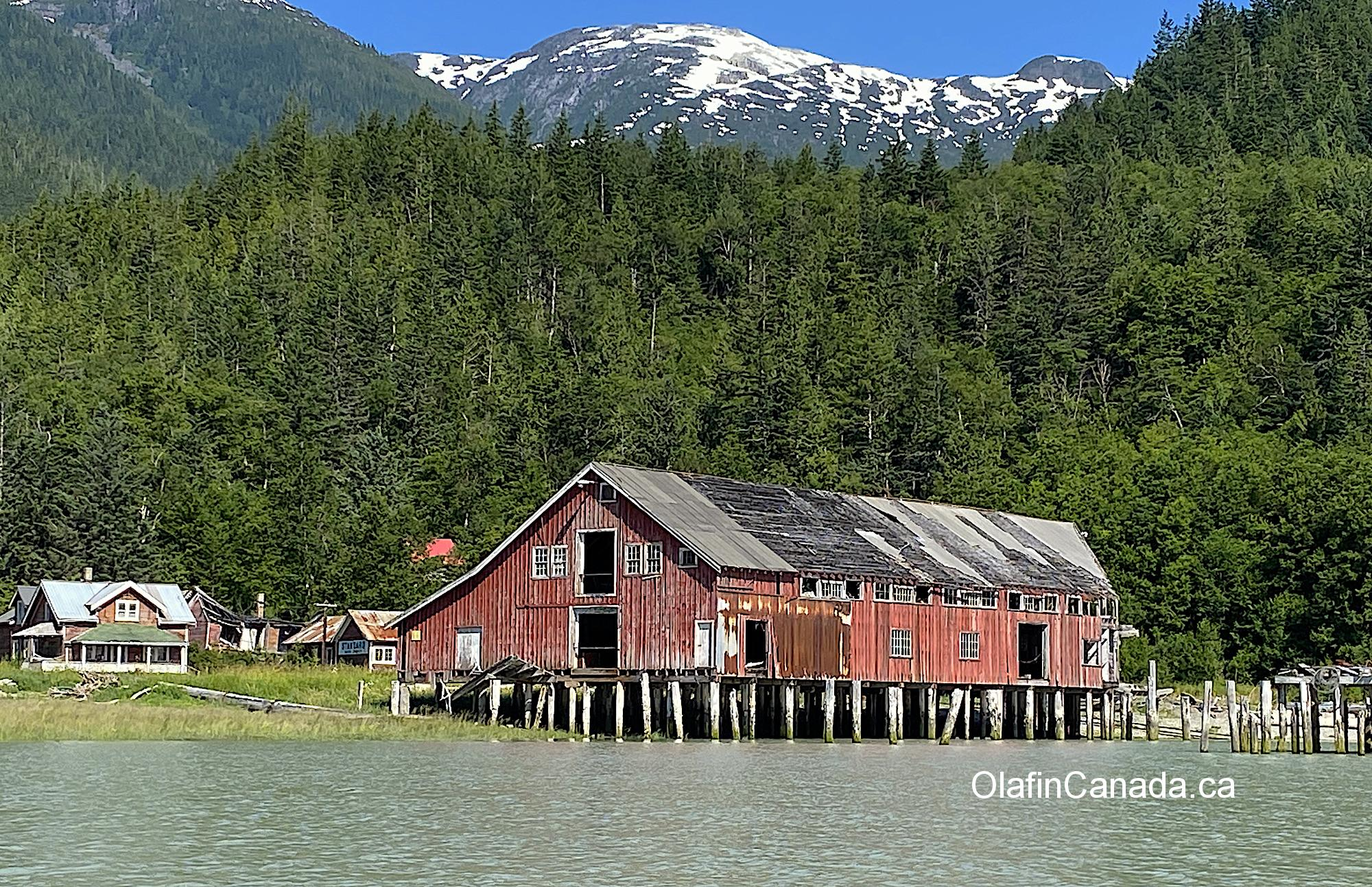 The Tallheo Cannery with the snow-capped mountains in the background #olafincanada #britishcolumbia #discoverbc #abandonedbc #tallheocannery #bellacoola