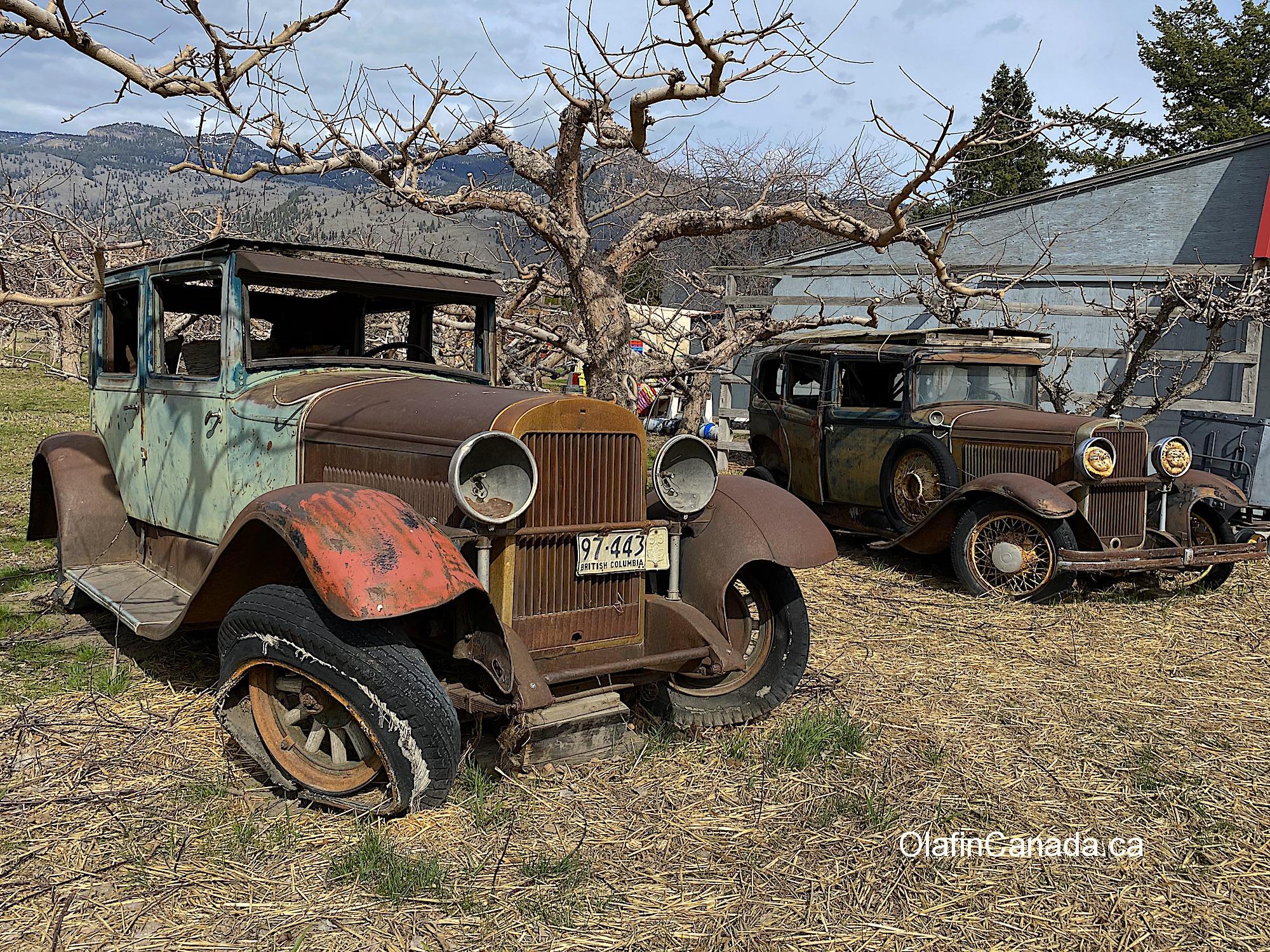 Old cars from the thirties in Keremeos #olafincanada #britishcolumbia #discoverbc #abandonedbc #keremeos #car
