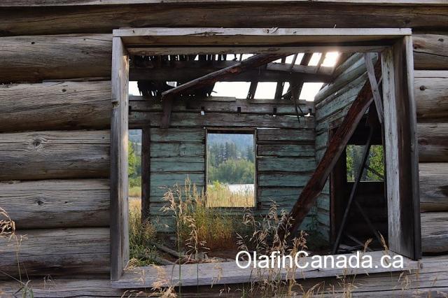 See through at the barn at the Pothole Ranch in the Farwell Canyon #olafincanada #britishcolumbia #discoverbc #abandonedbc #chilcotin #farwellcanyon #potholeranch #homestead
