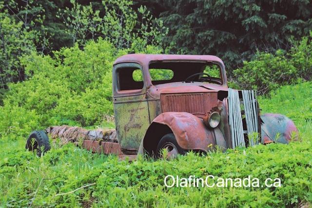 Truck in the Cariboo #olafincanada #britishcolumbia #discoverbc #abandonedbc #cariboo #truck