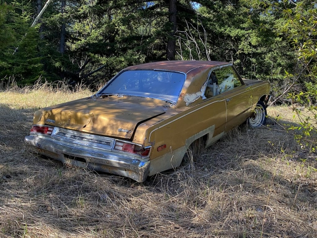 Old Plymouth car in Ogden BC #olafincanada #britishcolumbia #discoverbc #abandonedbc #plymouth #car